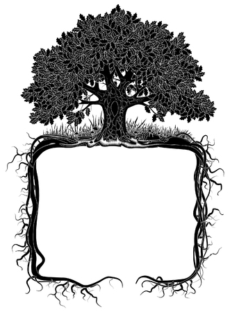 Oak tree with roots frame. Artistic banner and page design. Vintage engraving stylized drawing. Vector illustration