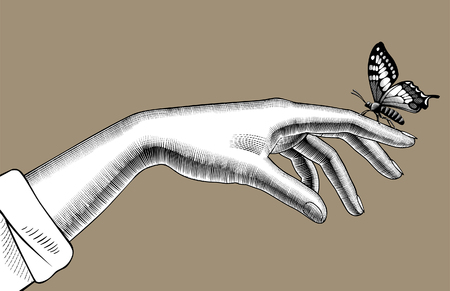Womans hand with a butterfly sitting on her finger. Vintage engraving stylized drawing. Vector illustration Illustration