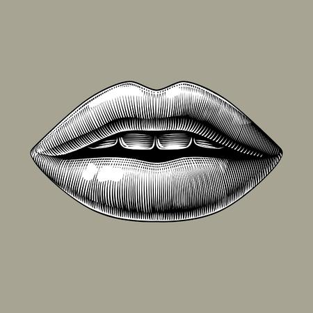 Weibliche Lippen. Vintage Gravur stilisierte Zeichnung. Vektor-Illustration
