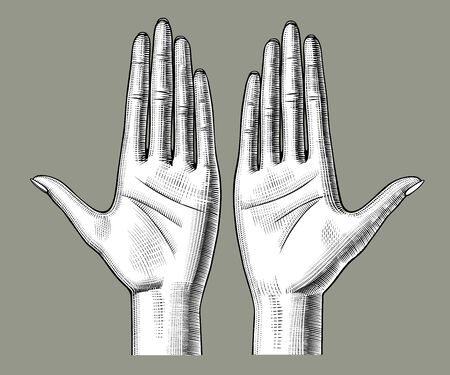 Pair of female hands palm up