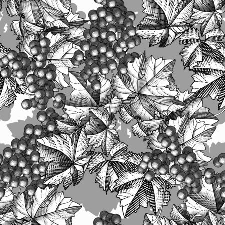 Grapes background. Seamless pattern of grapes. Bunch of grapes with leaves. Vintage engraving color stylized drawing. Vector illustration 向量圖像