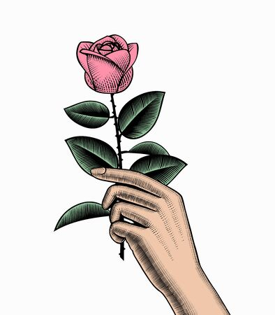 Hand with a rose. Retro style valentine greeting card design. Vintage engraving stylized drawing. Vector illustration Фото со стока - 146333132