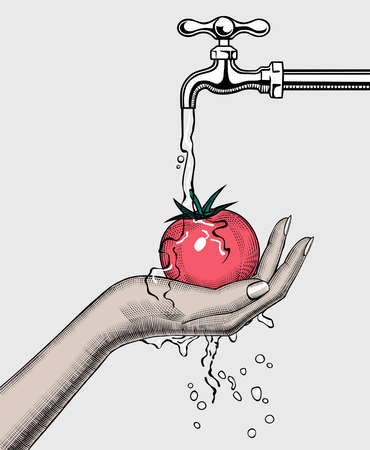 A womans hand washes a tomato under the water tap.