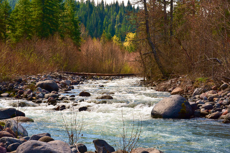 runoff: A river, cold with mountain snow runoff, is on its way to the Columbia River.