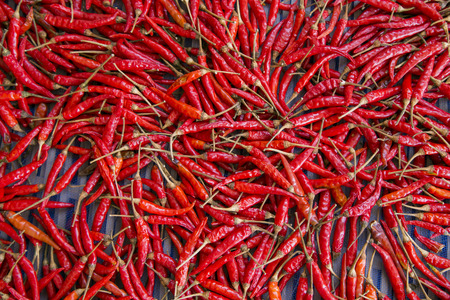 red hot: Red Hot,chilly,Vegetable,thailand