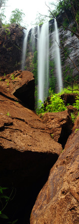 Australia Landscape : Queen Mary Falls of Main Range National Park in Queensland