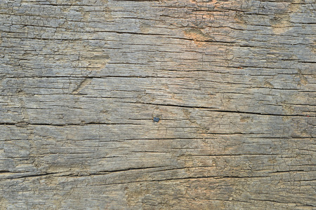 Natural wood patterns
