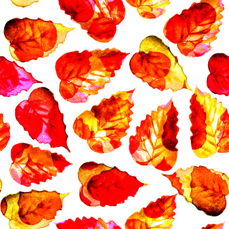 red leaves: Seamless watercolor red leaves pattern with white background