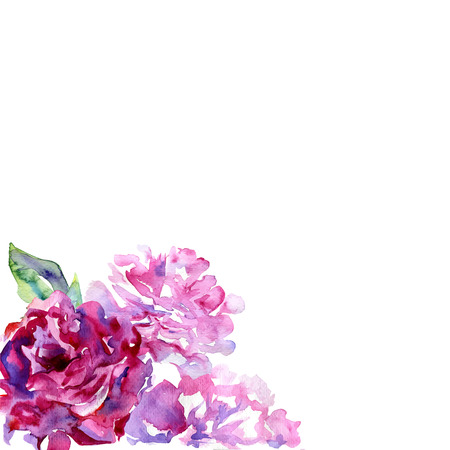 painted image: White background with violet, pink peons and copy space