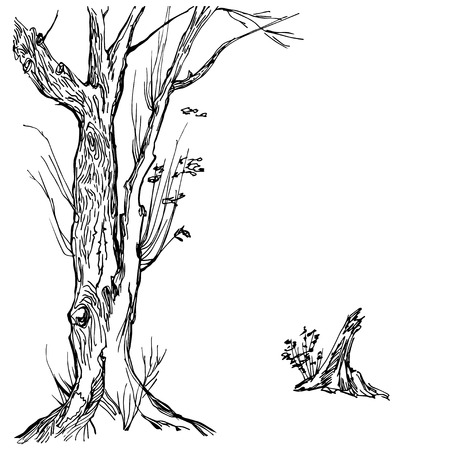 treetop: Hand drawn tree silhouette and stump on white background