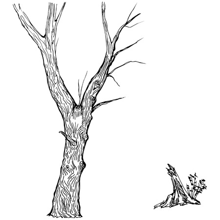 single tree: Hand drawn tree silhouette and stump on white background