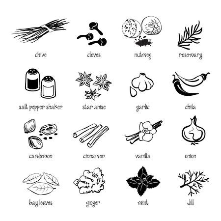 condimentos: Conjunto de web conjunto de iconos - especias, condimentos y hierbas