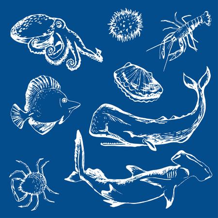 pulpo: mariscos, langosta, ballena de esperma, el tiburón, pez erizo, cangrejo, pulpo; yo Vectores