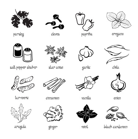 condiments: Set of web icon set - spices, condiments and herbs