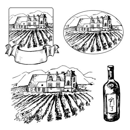 viñedo: Conjunto de diferentes symbils de viñedo y botella de vino