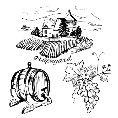 white wine: Set of vineyard, barrel of winr and bunch of grape