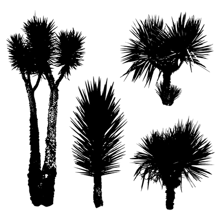 coco: Black silhouettes of different Yucca Illustration