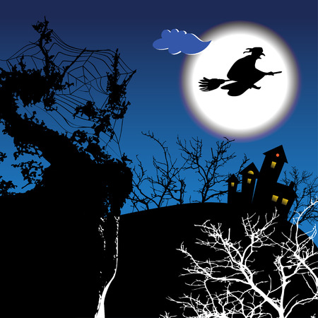 harridan: Night halloween background with witch on the sky