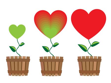 flower pots: Symbols of growing heart in flower pots