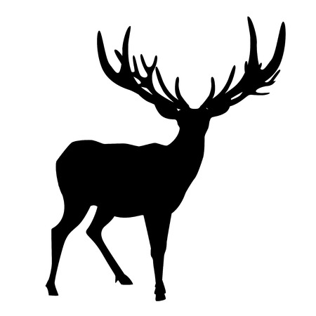 balck: Balck silhouette of deer with big antler