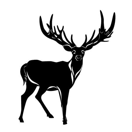 Balck silhouette of deer with big antler