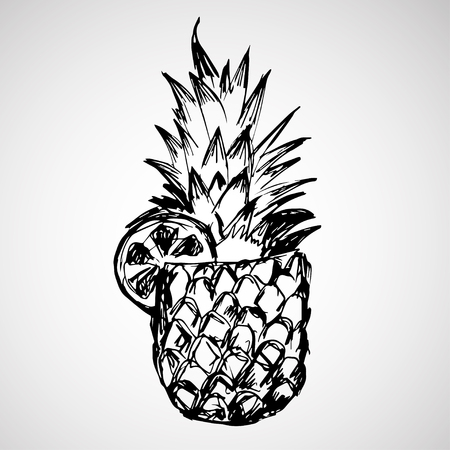 intricacy: Hand drawn pineapple with orange