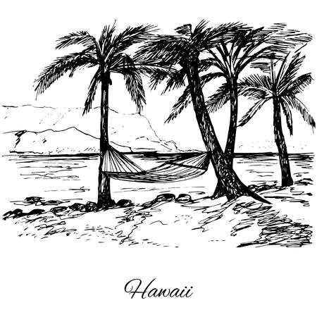 temperate: Hand drawn hammock around palm trees Illustration