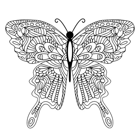 Hand drawn doodle butterfly Illustration