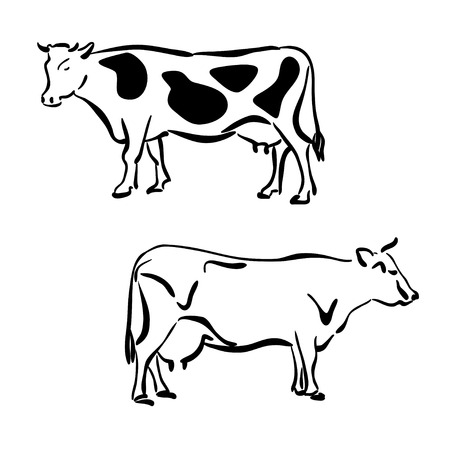 grazer: Black and white silhouettes of cows