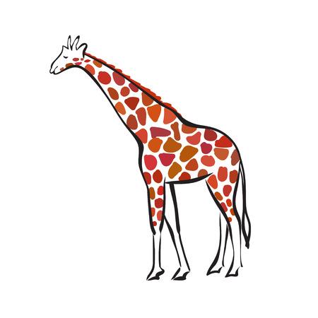 Geïsoleerde silhouet van de giraf