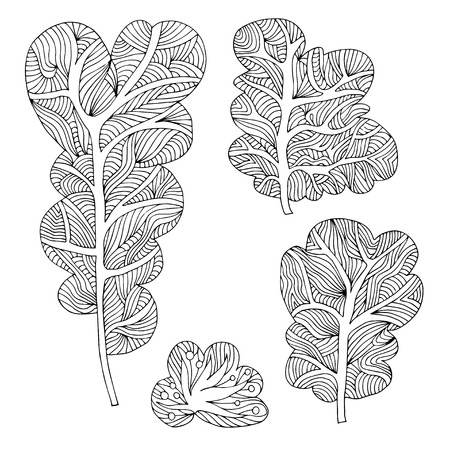 larch: Set of hand drawn different trees