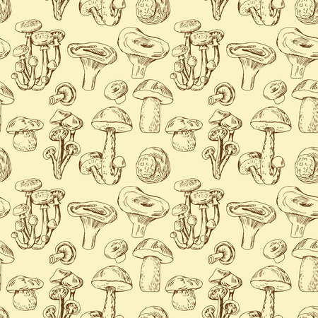 morel: Seamless pattern with hand drawn edible mushrooms