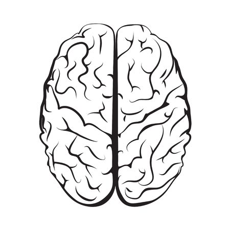Black and white outline brain mark from top view. Isolated on white background