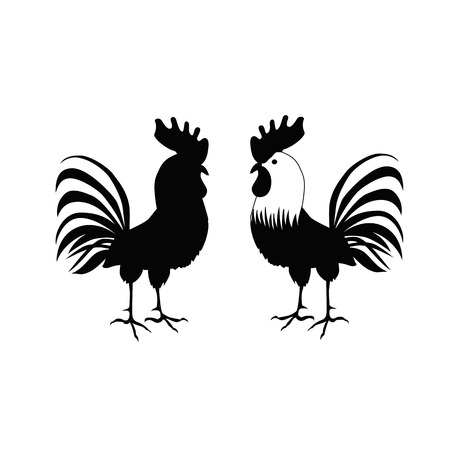 Cocks in hand-drawing style. Rooster symbol of Chinese New Year. Vector illustration. In full growth. Isolated bird on white background Illustration