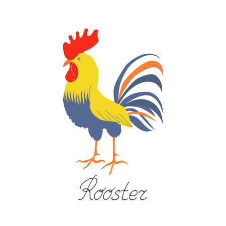 Cock in flat style. Rooster symbol of Chinese New Year. Vector illustration. In full growth. Bright cockerel on a white background.