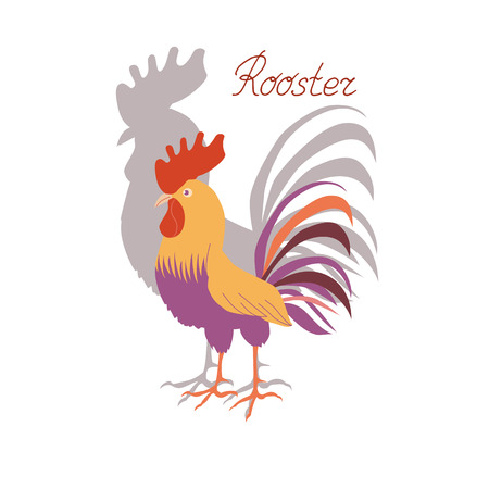 Cute cockerel with his shadow on a white background. Illustration in flat style. Rooster symbol of Chinese New Year. Illustration