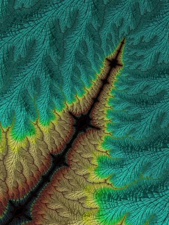 Fractal images multi color