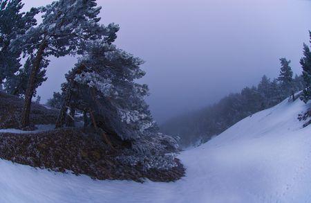 lowering: winter evening