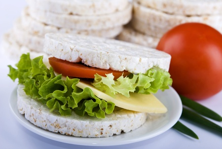 Sandwiches with cheese and tomato