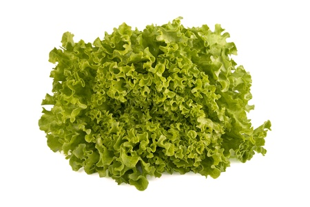 Fresh lettuce isolated on white background Zdjęcie Seryjne - 9396766