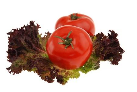Fresh tomatoes, red leaf lettuce ,  isolated on white background Zdjęcie Seryjne