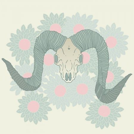 large skull: Ram skull isolated vector illustration.