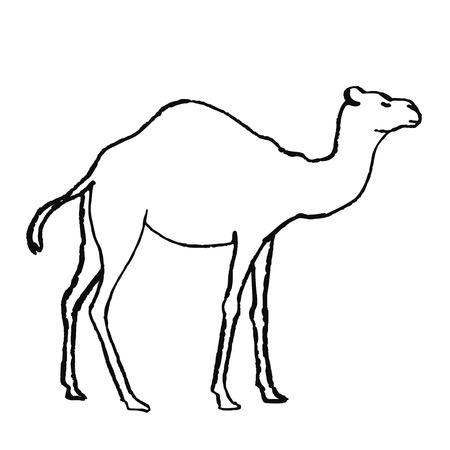 Simpatico animale disegnato a mano in stile scandinavo. Arte della linea semplice. Illustrazione vettoriale. Vettoriali