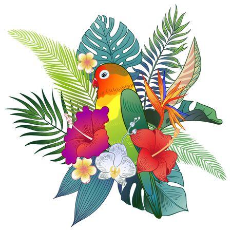 Beautiful tropical exotic parrot bird. Vector illustration. 矢量图像
