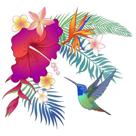 Beautiful tropical exotic parrot bird. Vector illustration. 向量圖像