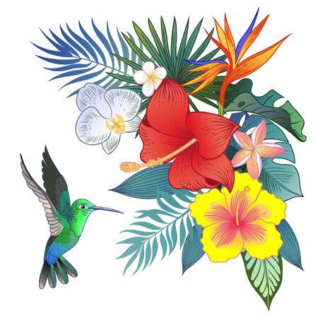 Bel oiseau perroquet exotique tropical. Illustration vectorielle.