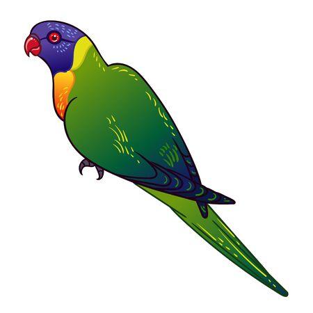 Beautiful tropical exotic parrot bird. Vector illustration. Illustration