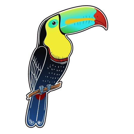 Beautiful tropical exotic bird. Toucan bird. Vector illustration. Stock Illustratie