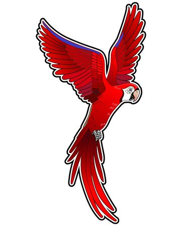 Mooie tropische exotische papegaaivogel. Vector illustratie. Vector Illustratie