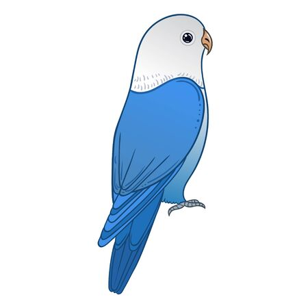Beautiful tropical exotic lovebird. Vector illustration. Vector Illustratie